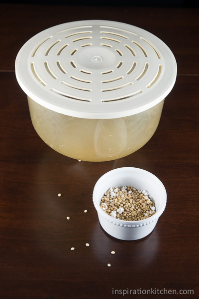 Sorghum Popcorn Popper | Inspiration Kitchen